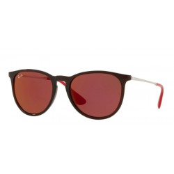 Ray-Ban RB 4171 Erika 6339D0 Marrone