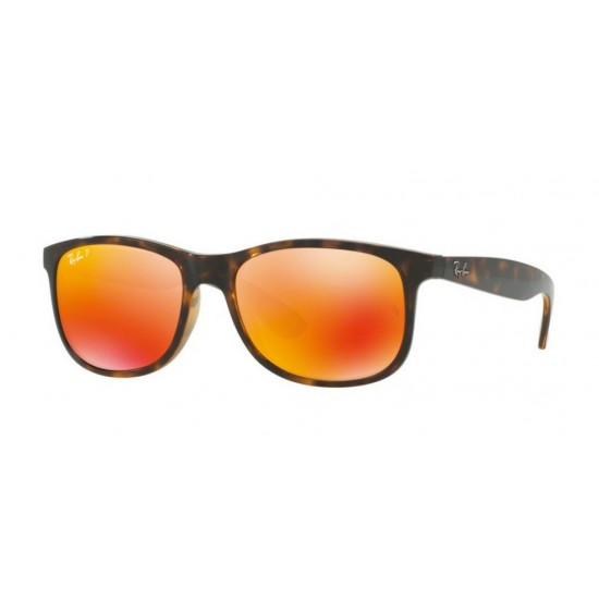 Ray-Ban RB 4202 710-6S Andy Avana